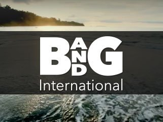 B and G International